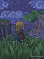 Link - Night of freedom by Zefy