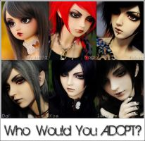 Who Would You Adopt? by asainemuri