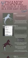Change the Color of a Horse in a few Easy Steps by Befera