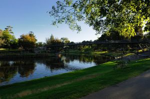 Morning at Torrens River by WestLothian