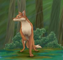 Forest fox by Sabientje