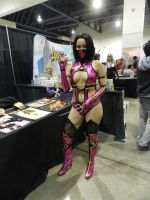 LevelUp Expo 2014 Mortal Kombat Mileena by Demon-Lord-Cosplay