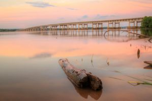 Pink-log Hdr by joelht74