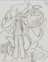 ShinFox and his Dragon-type Pokebros. by MessatsuGouFox