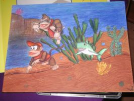 Donkey Kong Country by Gie