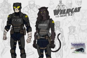 New 52 Wildcat by Needham-Comics