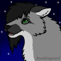 Wish Upon A Star by BlackRidgeWolf