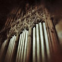 Organ Of St. Patricks NYC by KatieJoArt