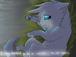 I only wanted to be with you .:Cinderpelt:. by xseashell