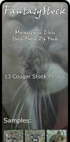 Mountain Lion Stock Zip Pack by FantasyStock