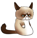 Grumpy Cat Bloop by Dragons-Desires