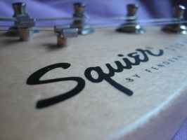 Squier by M-fly