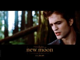 edward cullen. new moon by naninhaxxx