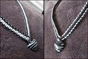 Two in One Necklace by vaoni