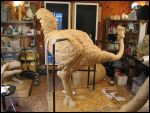 Lunchtime Chaos Ostrich BIG by RandyHand