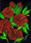 Red Hibiscus in oil by Abaez40