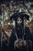 Dark Forest by Elena-NeriumOleander