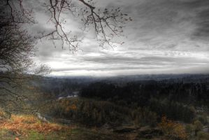 sandy river hdr by alive-n-kickin
