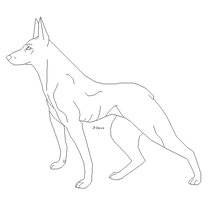 Beauceron lineart by J-Dove