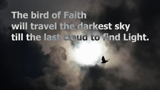 The bird of Faith by DraganTheMighty