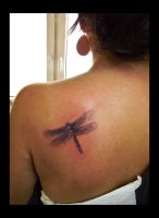 dragonfly by Selejt