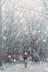 Like the cold December snow by ConceptualMiracles