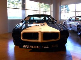 1970 SCCA Trans Am Jerry Titus by Partywave