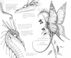 Scarlet Imperial Dragonfly study by Baron-Engel