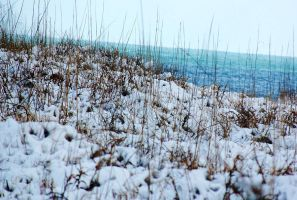 snow on the dunes by xthumbtakx