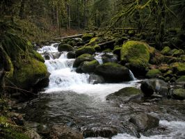 Babbling creek by Sonic840