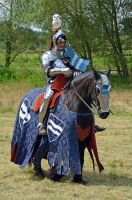 Kenilworth Castle Joust 2014 (73) by masimage