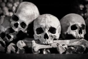 Skulls and Bones by Pzychonoir