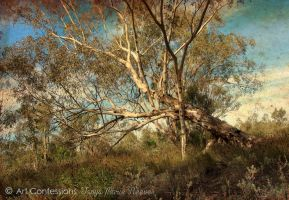 Tree Over by TanyaMarieReeves