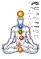 The 7 Chakras by StriderDen