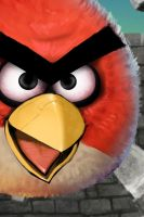Angry Birds iPhone by Dseo