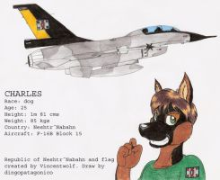 Charles and his F-16B by DingoPatagonico