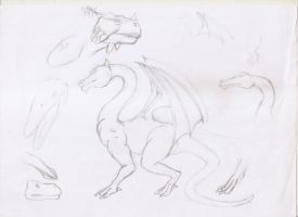 Another dragon draft with head studies by JulioBN