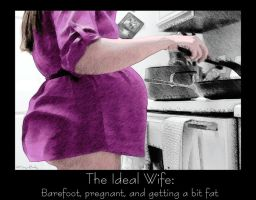 The Ideal Wife by EatingAndBreeding