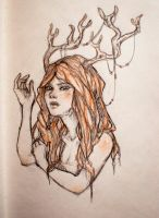 Antlers by Draakh
