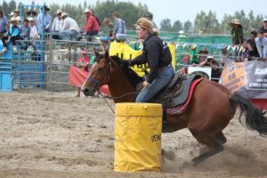 Taupo Rodeo 51 by Sooty-Bunnie