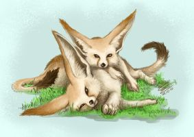 fennec cutey attack by Jejell