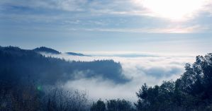 Fog over the Napa Valley 2 by rebekahlynn-photo