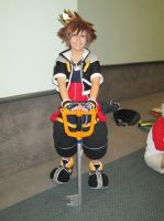 Kingdom Hearts: Sora by InuKid