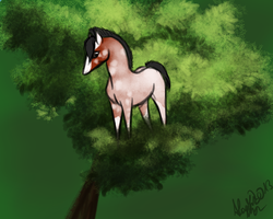 What does he do in that tree?! by TuttibirdArts