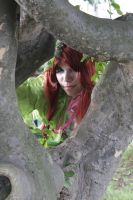 Poison Ivy Through The Tree by LeadingPlantLady