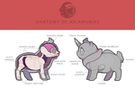 Anatomy of an Anubias by SinCommonStitches