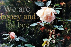 Honey and the Bee by Mon-Papillon