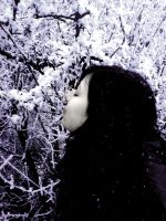 Queen of Snow by Abendland