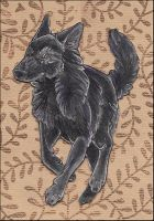 ACEO - Back to Black by awaicu