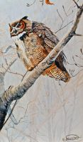Great-horned Owl by RandyAinsworth